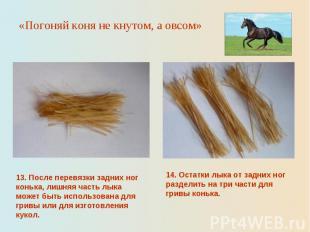 «Погоняй коня не кнутом, а овсом»13. После перевязки задних ног конька, лишняя ч