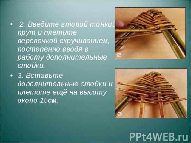 2. Введите второй тонкий прут и плетите верёвочкой скручиванием, постепенно вводя в работу дополнительные стойки. 3. Вставьте дополнительные стойки и плетите ещё на высоту около 15см.
