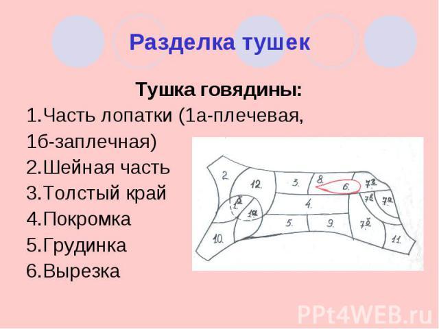 Разделка тушек Тушка говядины:1.Часть лопатки (1а-плечевая, 1б-заплечная)2.Шейная часть3.Толстый край4.Покромка5.Грудинка6.Вырезка