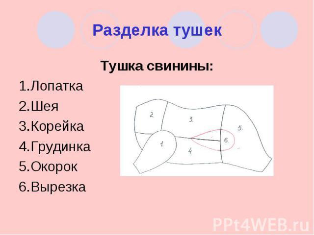Разделка тушек Тушка свинины:1.Лопатка2.Шея3.Корейка4.Грудинка5.Окорок6.Вырезка