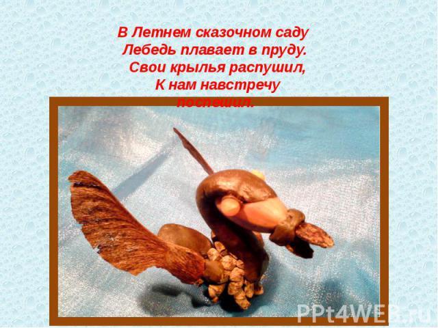 В Летнем сказочном саду Лебедь плавает в пруду. Свои крылья распушил, К нам навстречу поспешил.