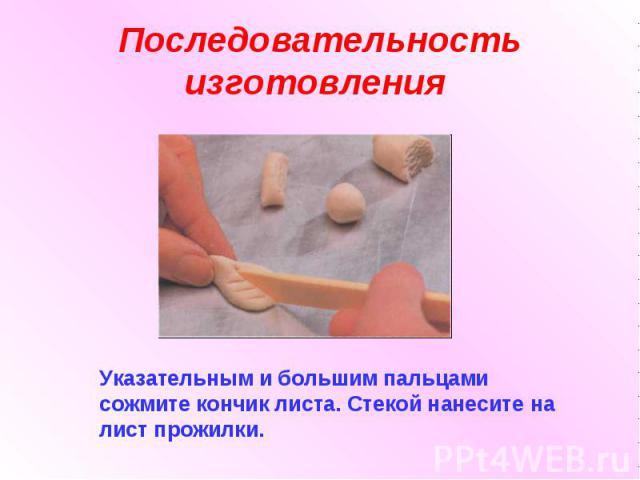 Последовательность изготовления Указательным и большим пальцами сожмите кончик листа. Стекой нанесите на лист прожилки.
