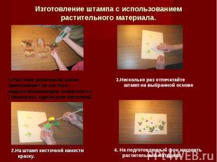 Изготовление штампа с использованием растительного материала. 1.Растение резинов