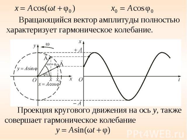 Вращающийся вектор амплитуды полностью характеризует гармоническое колебание. Проекция кругового движения на ось у, также совершает гармоническое колебание