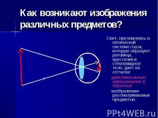 Как возникают изображения различных предметов? Свет, преломляясь в оптической си