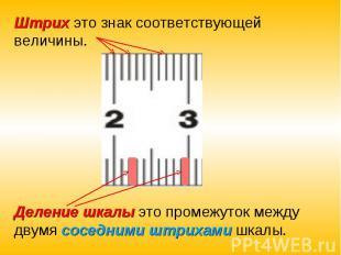 Штрих это знак соответствующей величины.Деление шкалы это промежуток между двумя