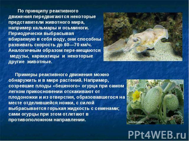 По принципу реактивного движения передвигаются некоторые представители животного мира, например кальмары и осьминоги. Периодически выбрасывая вбираемую в себя воду, они способны развивать скорость до 60—70 км/ч. Аналогичным образом перемещаются меду…