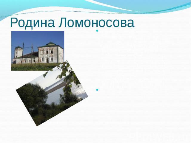 Родина Ломоносова Верстах в 80-ти от Архагельска , приняв воды реки Пинеги, Северная Двина круто поворачивает на север и разделяется на несколько рукавов и протоков, Между которыми лежат девять больших и малых островов. Один из них - Куростров, расп…