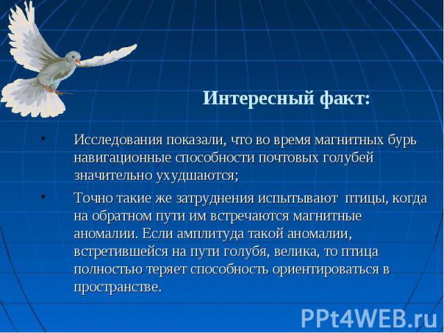 Интересный факт: Исследования показали, что во время магнитных бурь навигационные способности почтовых голубей значительно ухудшаются;Точно такие же затруднения испытывают птицы, когда на обратном пути им встречаются магнитные аномалии. Если амплиту…