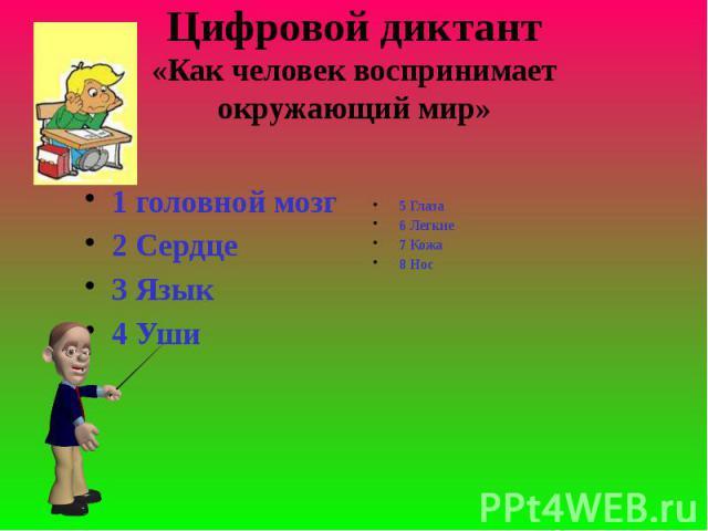 Цифровой диктант«Как человек воспринимает окружающий мир» 1 головной мозг2 Сердце3 Язык4 Уши5 Глаза6 Легкие7 Кожа8 Нос