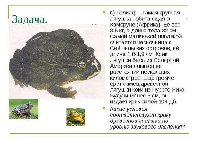 Задача. в) Голиаф – самая крупная лягушка , обитающая в Камеруне (Африка). Её вес 3,5 кг, а длина тела 32 см. Самой маленькой лягушкой считается чесночница с Сейшельских островов, её длина 1,8-1,9 см. Крик лягушки быка из Северной Америки слышен на …