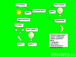 Люминесцирующие:- экран телевизора;- лампы дневного света;- гнилушки;- светлячки