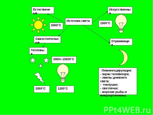 Люминесцирующие:- экран телевизора;- лампы дневного света;- гнилушки;- светлячки;- морские рыбы и микроорганизмы.