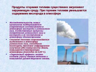Продукты сгорания топлива существенно загрязняют окружающую среду. При горении т