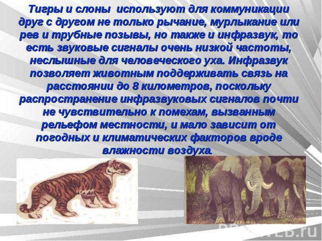 Тигры и слоны используют для коммуникации друг с другом не только рычание, мурлыкание или рев и трубные позывы, но также и инфразвук, то есть звуковые сигналы очень низкой частоты, неслышные для человеческого уха.Инфразвук позволяет животным поддер…