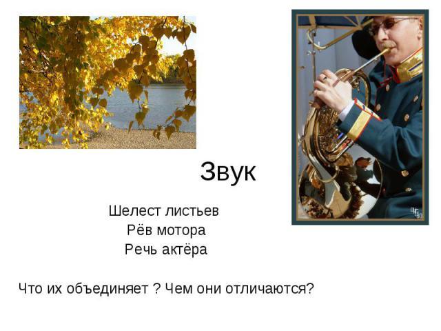 Звук Шелест листьев Рёв мотораРечь актёраЧто их объединяет ? Чем они отличаются?