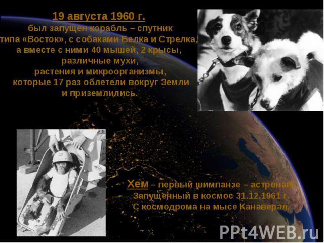 19 августа 1960 г. был запущен корабль – спутниктипа «Восток», с собаками Белка и Стрелка, а вместе с ними 40 мышей, 2 крысы, различные мухи,растения и микроорганизмы, которые 17 раз облетели вокруг Земли и приземлились. Хем – первый шимпанзе – астр…