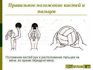 Правильное положение кистей и пальцев Положение кистей рук и расположение пальце