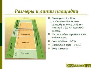 Размеры и линии площадки Размеры – 9 х 18 м, разделенный пополам сеткой ( высота