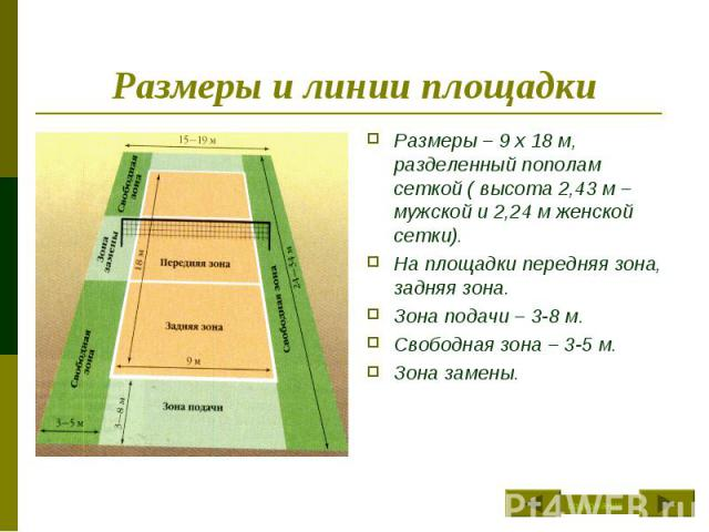 Размеры и линии площадки Размеры – 9 х 18 м, разделенный пополам сеткой ( высота 2,43 м – мужской и 2,24 м женской сетки).На площадки передняя зона, задняя зона.Зона подачи – 3-8 м.Свободная зона – 3-5 м.Зона замены.