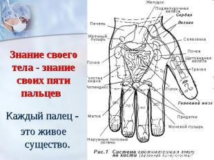 Знание своего тела - знание своих пяти пальцев Каждый палец - это живое существ