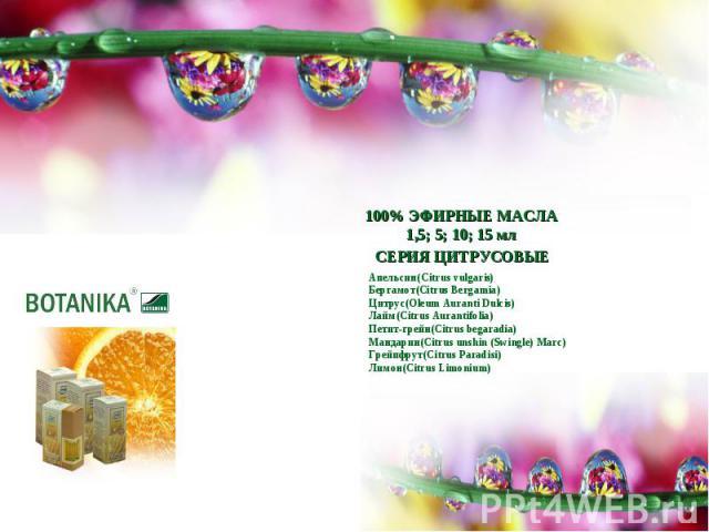 100% ЭФИРНЫЕ МАСЛА1,5; 5; 10; 15 млСЕРИЯ ЦИТРУСОВЫЕАпельсин(Citrus vulgaris)Бергамот(Citrus Bergamia)Цитрус(Oleum Auranti Dulcis)Лайм(Citrus Aurantifolia)Петит-грейн(Citrus begaradia)Мандарин(Citrus unshin (Swingle) Marc)Грейпфрут(Citrus Paradisi)Ли…