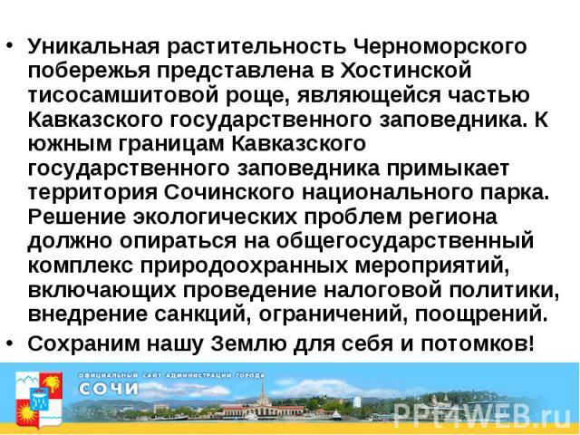 Уникальная растительность Черноморского побережья представлена в Хостинской тисосамшитовой роще, являющейся частью Кавказского государственного заповедника. К южным границам Кавказского государственного заповедника примыкает территория Сочинского на…