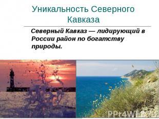 Уникальность Северного Кавказа Северный Кавказ — лидирующий в России район по бо
