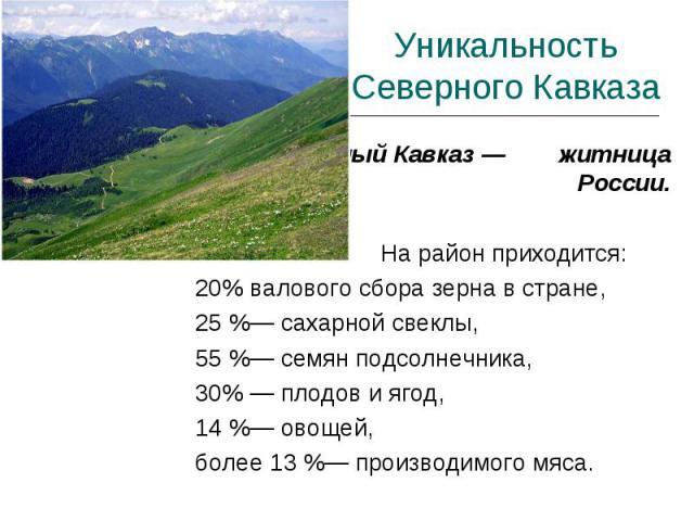Уникальность Северного Кавказа Северный Кавказ — житница России. На район приходится:20% валового сбора зерна в стране, 25 %— сахарной свеклы, 55 %— семян подсолнечника, 30% — плодов и ягод,14 %— овощей, более 13 %— производимого мяса.