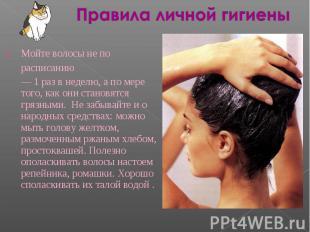 Правила личной гигиены Мойте волосы не порасписанию— 1 раз в неделю, а по мере т