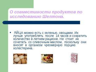 О совместимости продуктов по исследованию Шелтона. ЯЙЦА можно есть с зеленью, ов