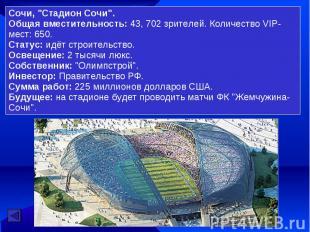 """Сочи, """"Стадион Сочи"""".Общая вместительность: 43, 702 зрителей. Количество VIP-мес"""