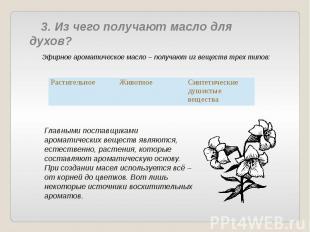 3. Из чего получают масло для духов? Эфирное ароматическое масло – получают из в