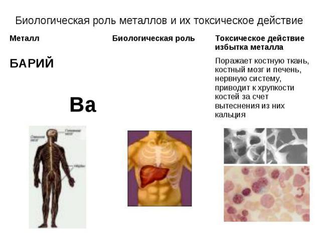 Биологическая роль металлов и их токсическое действие