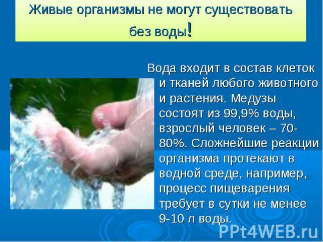 Живые организмы не могут существовать без воды! Вода входит в состав клеток и тканей любого животного и растения. Медузы состоят из 99,9% воды, взрослый человек – 70-80%. Сложнейшие реакции организма протекают в водной среде, например, процесс пищев…