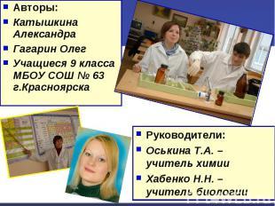 Авторы:Катышкина Александра Гагарин Олег Учащиеся 9 класса МБОУ СОШ № 63 г.Красн