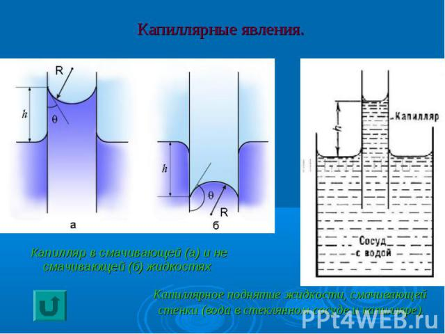 Капиллярные явления. Капилляр в смачивающей (а) и не смачивающей (б) жидкостях Капиллярное поднятие жидкости, смачивающейстенки (вода в стеклянном сосуде и капилляре