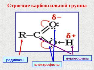 Строение карбоксильной группы радикалыэлектрофилынуклеофилы