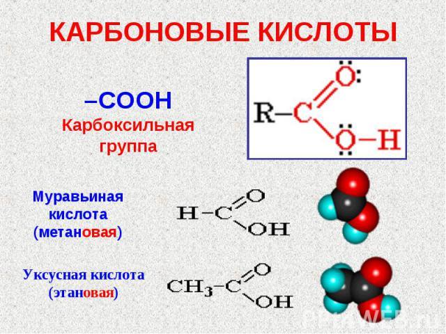 КАРБОНОВЫЕ КИСЛОТЫ –COOHКарбоксильная группаМуравьиная кислота(метановая)Уксусная кислота(этановая)