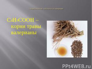 С4Н9СООН – корни травы валерианыС4Н9СООН – корни травы валерианы