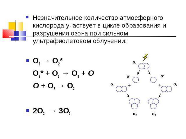 Незначительное количество атмосферного кислорода участвует в цикле образования и разрушения озона при сильном ультрафиолетовом облучении:O2 → O2*O2* + O2 → O3 + OO + O2 → O32O3 → 3O2