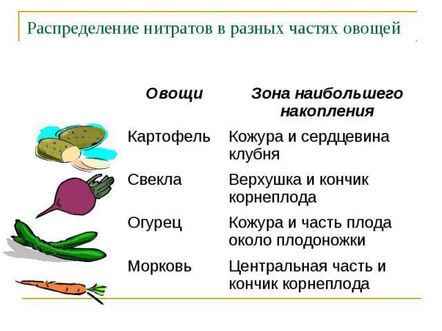 Распределение нитратов в разных частях овощей