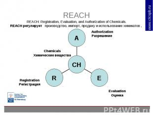 REACHREACH: Registration, Evaluation, and Authorization of Chemicals.REACH регул