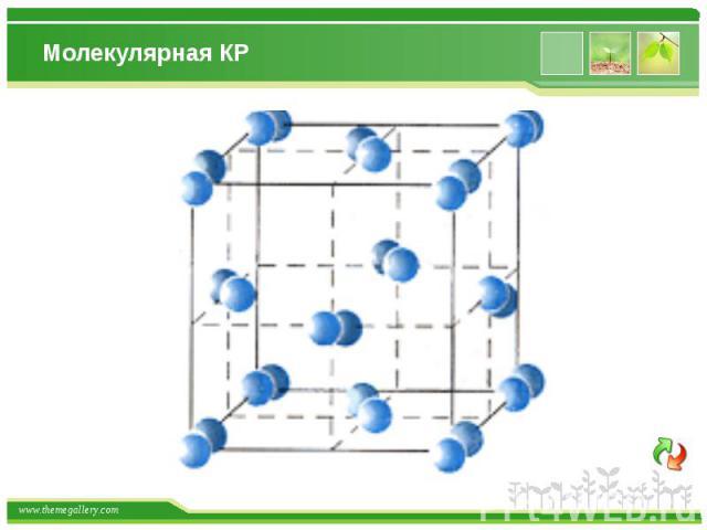 Молекулярная КР