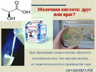 Молочная кислота: друг или враг? При образовании сахара в молоке образуется моло