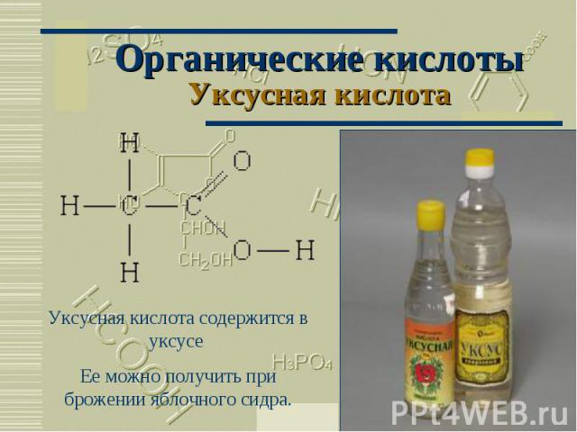 Органические кислотыУксусная кислота Уксусная кислота содержится в уксусе Ее можно получить при брожении яблочного сидра.