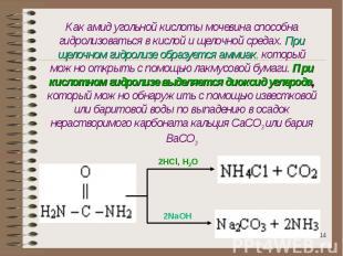 Как амид угольной кислоты мочевина способна гидролизоваться в кислой и щелочной