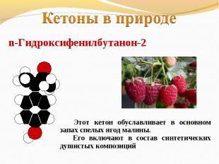 Кетоны в природеn-Гидроксифенилбутанон-2 Этот кетон обуславливает в основном зап