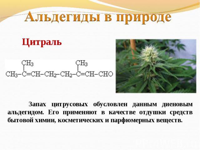 Альдегиды в природеЦитраль Запах цитрусовых обусловлен данным диеновым альдегидом. Его применяют в качестве отдушки средств бытовой химии, косметических и парфюмерных веществ.