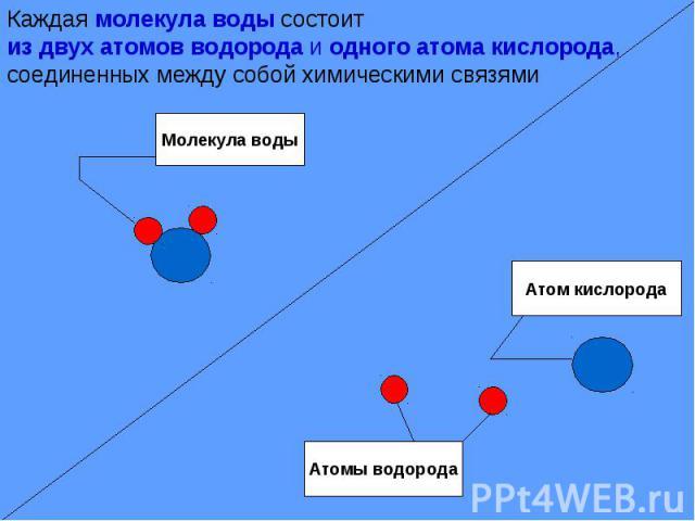 Каждая молекула воды состоитиз двух атомов водорода и одного атома кислорода, соединенных между собой химическими связями